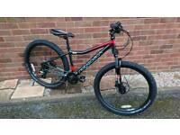 Bicycle - mountain bike
