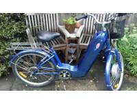 Powabyke Electric Bike