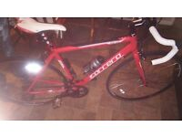 Carrera zelos mens road bike NEVER USED!!