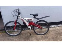 large kids or small adult Mountain Bike, ideal Xmas. Yes i can deliver, most of Colchester only £5