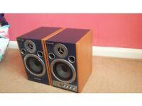 Catwalk roland speakers