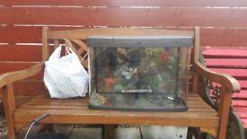 Love fish Aquarium