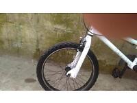 Dirty Ripper BMX