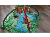 Fisher-Price Rainforest mat