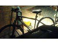 Merida Rider series 300