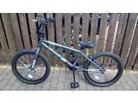 "Brand new spektor bMX bike 20"""