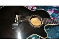 TAKAMINE EF391 (collectable)