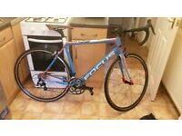 looking for a quick sale / this is a canyo focus road bike