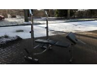 BODYMAX CF353 OLYMPIC COMPETITOR WEIGHTS BENCH WITH SQUAT STANDS
