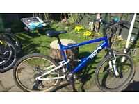 7 mountain bikes for sale all serviced all £40 each THROSK