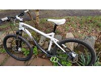"""Specialized Myka Expert 19"""" mountain bike"""