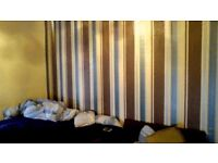 two room to rent in newcastle elswick