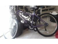 Halfords mountain bike