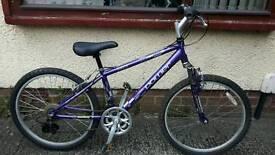 Ladies small Power Breeze bike