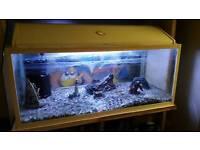 Fish Tank pump & light
