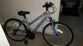 Adult ladies Mountain bike