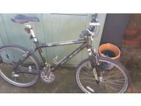 Mens Rayleigh Mountain Bike