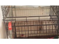 2 door small dog cage