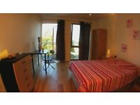 MANY AFFORDABLE ROOMS in CENTRAL LONDON ASAP - FLEXIBLE TERMS