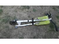 Flikr scooter