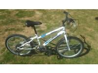 Syncrony Boys Bike