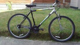 Mens Emmelle Active Mountain Bike