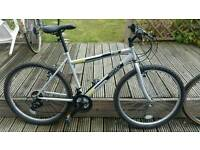 Adult men trax bicycle