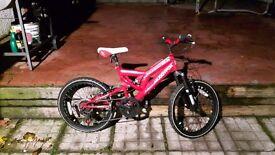 Muddyfox bicycle