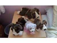 staffie cuddly toys