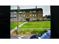 2 bed council flat wanting mutual exchange/ home swap for a 2 or 3 bedroom house