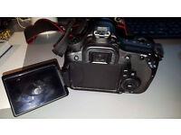 Canon EOS 60D + Tamron 17-50 f2.8 Lens