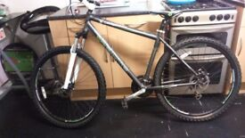 Coyote Route 29er