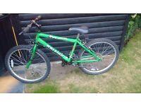 Raleigh Max Mountain Bike - Green - 20 inch wheels - £40