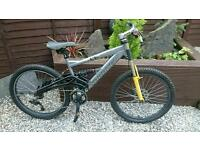 Saracen mountain bike