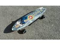 Electronic skateboard 450w 12v