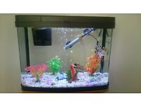 50 L fish tank with stand