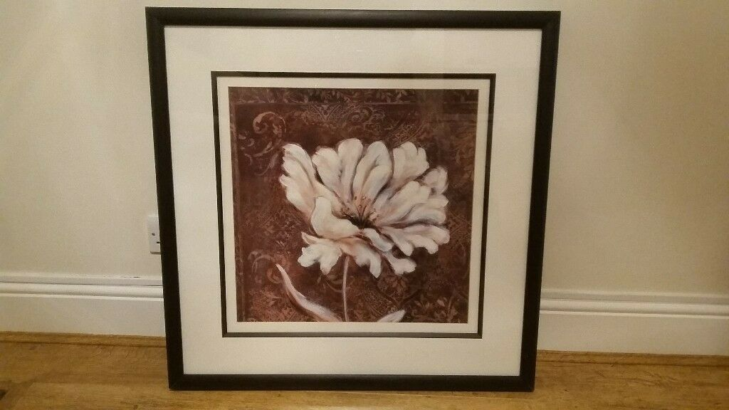 John Lewis Framed Floral Print 77cm X 77cm Open To Offers In