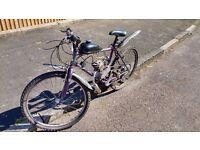 UPDATED 80cc Motorised bicycle. 300 ono Price drop