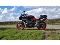 Mint condition Aprilia tuono 1000cc