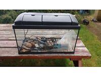 2ft Tropical fish tank (65 ltr)