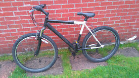 Cheap mountain bike, it rides better than it looks, it will get you from A to B