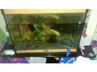 Fish tank around 3foot