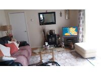 One Double Room for Sole Occupacy is available now.