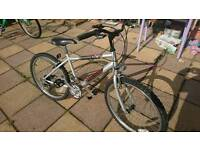 Raleigh mountain bike suit 6 ish to 10 12 all in good working order