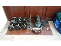 Gym equipment. Dumbbells and plates