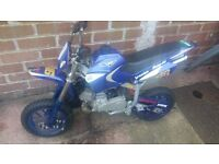 50cc mini moto pitbike ( pit bike )