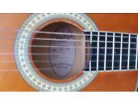 Guitar ( Hudson )