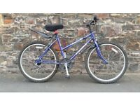FULLY SERVICED BLUE RALEIGH BICYCLE