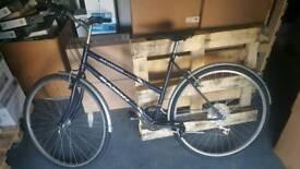 Ladies Navy Saxon Bike