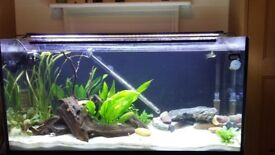 Complete 200 Litre Fish Tank setup with stand, filter light and loads more